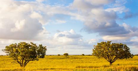 iSimangaliso-Wetland-Park Südafrika