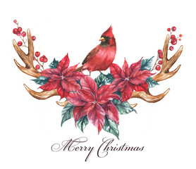Christmas illustration with the watercolor poinsettia flowers, red berries, Cardinal bird and antlers. Illustration for greeting cards, invitations, and other printing projects. Holiday card template