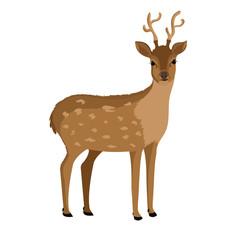 reindeer animal isolated icon vector illustration design