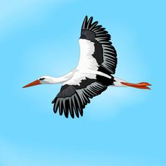 The stork in the sky