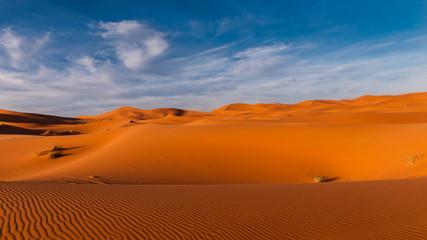 Abendstimmung über den Dünen der Sahara bei Merzouga (Erg Chebbi); Marokko