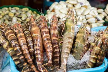 shrimp fresh