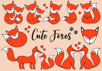 Cute foxes, vector set
