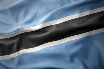 waving colorful flag of botswana.