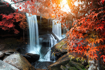 The landscape photo, beautiful rainforest waterfall in deep forest at Phu Kradueng National Park in Thailand
