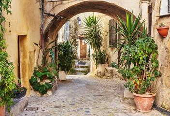 Fototapeta Narrow street with flowers in the old town Coaraze in France obraz