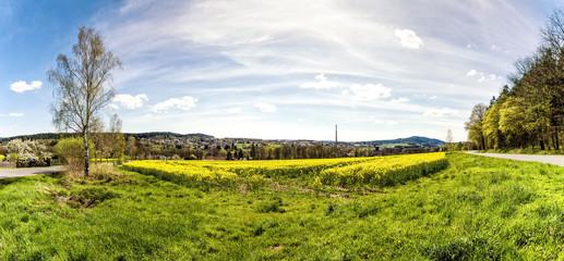 The green field near village