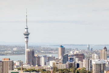 Wall Murals Toronto Cityscape of Auckland sky tower.