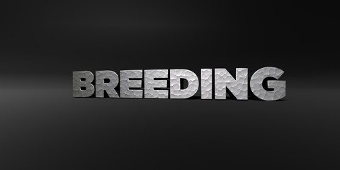 BREEDING - hammered metal finish text on black studio - 3D rendered royalty free stock photo. This image can be used for an online website banner ad or a print postcard.