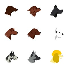 Types of dogs icons set. Flat illustration of 9 types of dogs vector icons for web