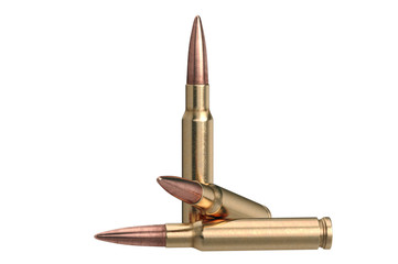 Bullet rifle ammo of brass and copper. 3D graphic
