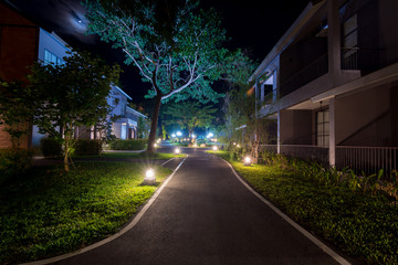 walkway in the night garden