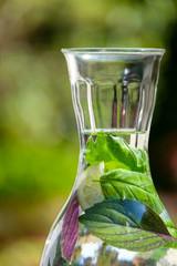 Close-up Karaffe mit aromatisiertem Kräuterwasser