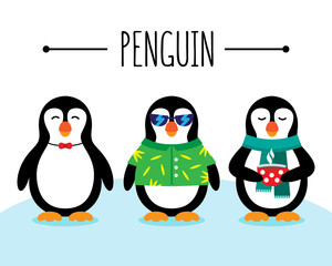 Cute penguins wild life animal illustrations. Funny penguins stand on snow