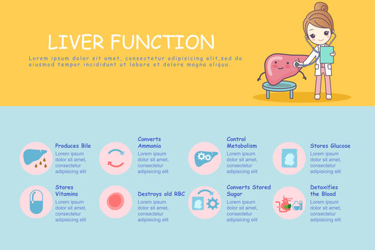 infographic of liver
