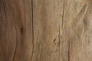 fondo de madera textura y superficie de madera wood background - Madera Rustica