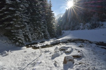 A stunning view from the spring show of nature in winter, sun, river, snow, trees
