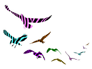 Seagulls with stripe decoration. silhouette on white background, Vector Illustration