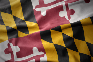 waving colorful flag of maryland state.