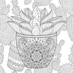 Zentangle Succulent on vector cactus seamless pattern. Hand draw