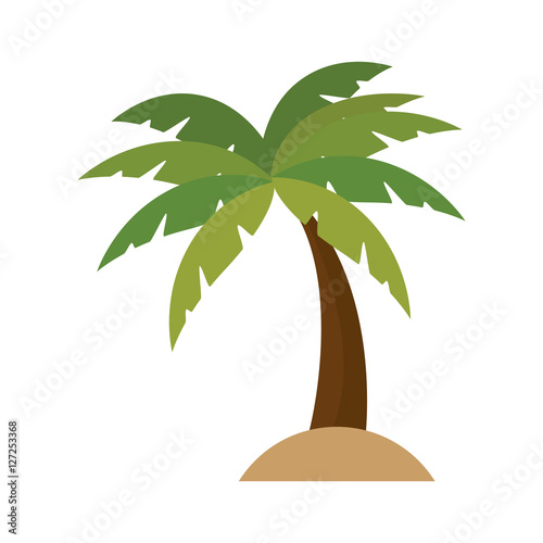 Wall mural tree palm isolated icon vector illustration design