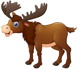 Cute moose cartoon