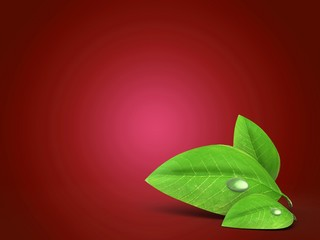 3d illustration of blank over red background with green leaf