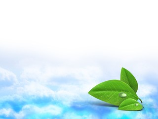 3d illustration of blank over clouds background with leaf
