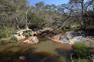 Die Landschaft der Caatinga in Brasilien