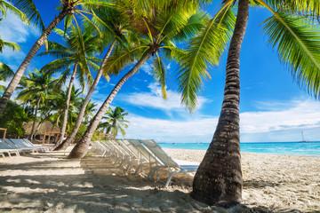 beach with sun loungers
