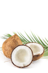 Open and whole coconuts and palm leaves