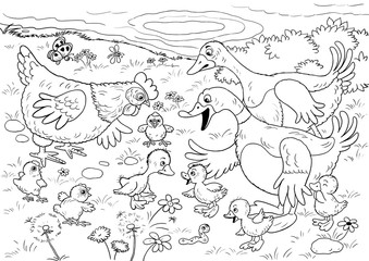 Ugly duckling. Fairy tale. Illustration for children