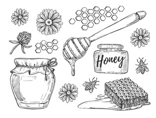 Honey making hand drawn illustrations set