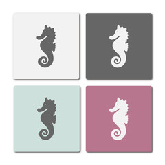 Icon of seahorse on different colored frames