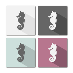 Icon of seahorse on different colored frames and shaded