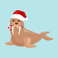 Christmas walrus in a cap and with a candy in your mouth is and enjoys in the New Year's Eve and Christmas and waiting for their gifts for the winter holidays vector illustration