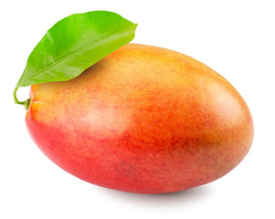mango isolated on the white background