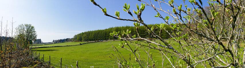 Countryside Farm Panorama