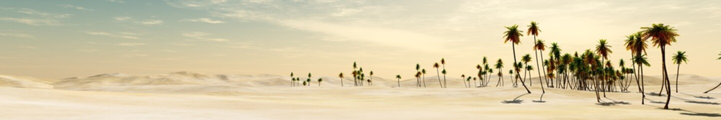 panorama of desert and palm trees.