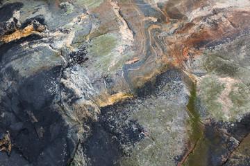 Wet coastal stone background texture