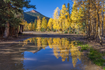Scenic Fall Relflection