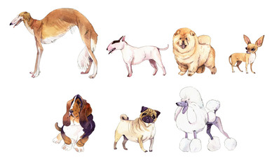 Watercolor illustration set of dogs