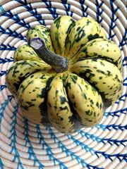 Green and yellow dumpling squash in basket