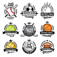 Set of vector sport emblems and labels