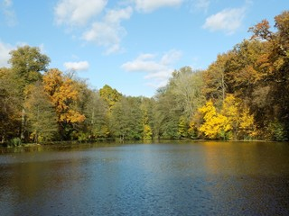 Lake and forest during autumn