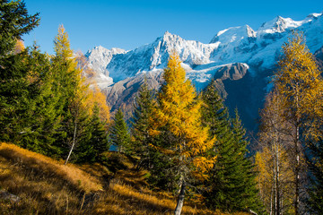 Fototapeten Gebirge Mont Blanc autumn