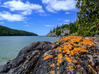 bright orange lichen on black rocks with lake in the distance