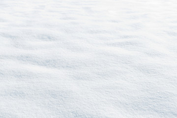 snow texture Wall mural