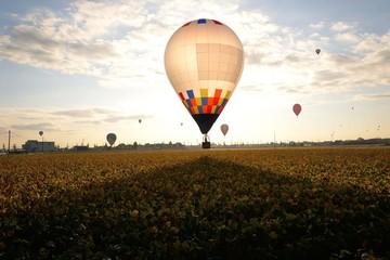 朝日を受けて飛び立つ気球 朝日の逆光に透けるバルーンが美しい。