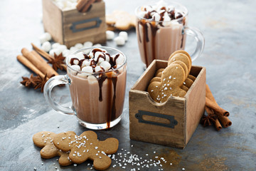 Hot cocoa with marshmallows and cookies